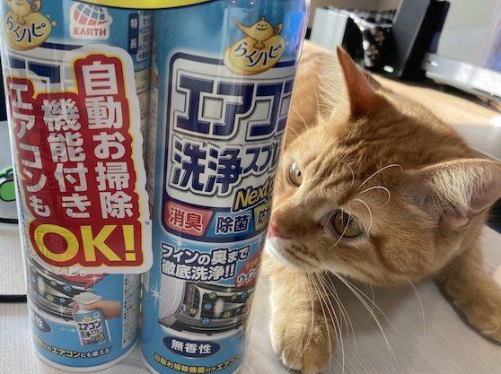 エアコン掃除猫