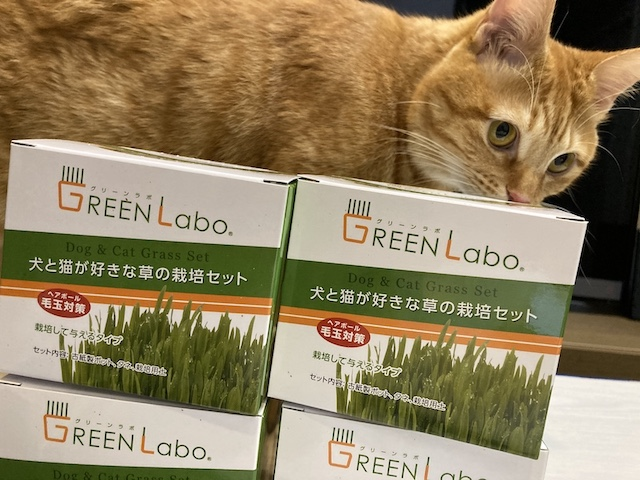 GreenLabo
